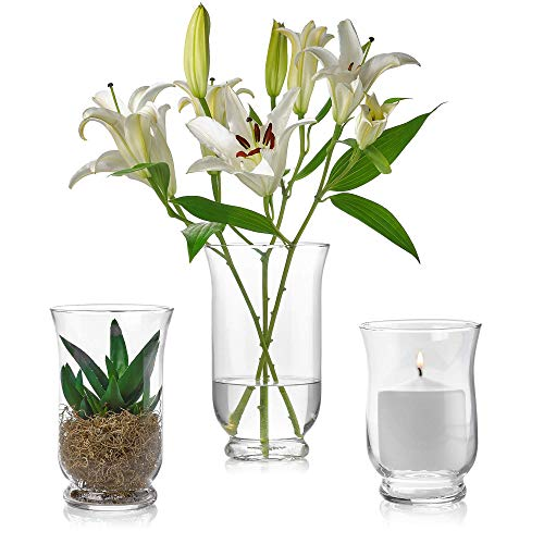 Set of 3 Glass Hurricane Vases 6, 8, 10-Inch-Tall - Multi-use: Pillar Candle Holder, Flower Vase - Perfect as a Wedding Centerpieces, Home Decoration (Extra Large Hurricane Vase)