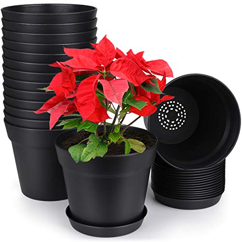 HOMENOTE Pots for Plants, 15 Pack 6 inch Plastic Planters with Multiple Drainage Holes and Tray – Plant Pots for All…