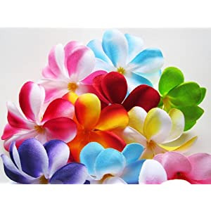 "(100) Assorted Hawaiian Plumeria Frangipani Silk Flower Heads - 3"" - Artificial Flowers Head Fabric Floral Supplies Wholesale Lot for Wedding Flowers Accessories Make Bridal Hair Clips Headbands Dress 2"