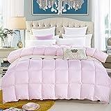 Echaprey Polyester Fibre Luxurious Feather Velvet Quilt Lightweight Comforter All Season Duvet Insert (Pink, Twin)
