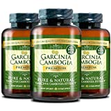 Garcinia Cambogia Premium 95% HCA - Best Natural Weight Loss, Quick Fat Burner and Appetite Suppressant - 180 Vegan Capsules, 3 Months Supply - 100% Money Back Guarantee!