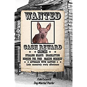 """Xoloitzcuintli Dog Wanted Poster: Weekly Planner Notebook 365 Daily - 52 Week Journal 120 pages 6""""x9"""" 6"""