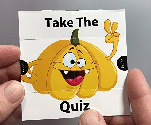 Take The Quiz Christian Bible Halloween Gospel Tract for Children - 24/PK -