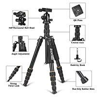 ZOMEI F678 Aluminum Portable Tripod with Ball Head Heavy Duty Lightweight Professional Compact Travel for Nikon Canon Sony All DSLR and Digital Camera by Zomei