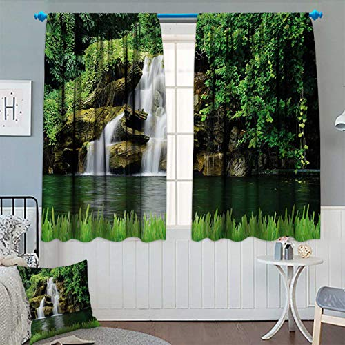 Birch Glass Waterfall - Chaneyhouse Waterfall Patterned Drape for Glass Door Double Waterfalls Flow to Natural Green Lake with Bushes and Grass Like Garden Print Waterproof Window Curtain 55