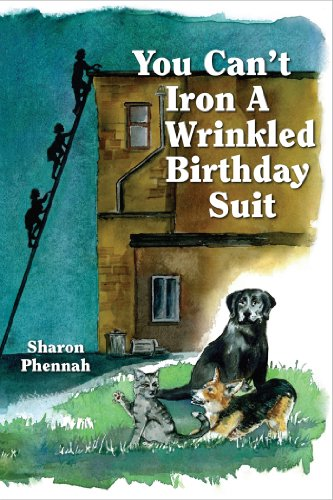 You Can't Iron a Wrinkled Birthday Suit cover