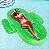 Sakiyr Inflatable Cactus Pool Floats, Outdoor Swimming Pool Party Lounge Raft for kid & Adults