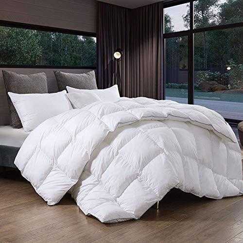 Luxury Goose Down Comforter Twin Size,Duvet Insert,100% Egyptian Cotton Fabric, 700Fill Power, Gray Piping, Down Proof with Tabs,Hypoallergenic for All Season,White Color