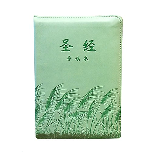 Holy Bible /Reed-Green-Cover 64K /Chinese Bible-Mandarin Version-Simplified Script/ The Old Testament and The New Testament /Christmas gift/Christian book by Chinese Bible-Mandarin Version