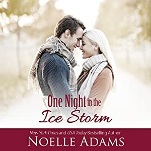 One Night in the Ice Storm Audiobook
