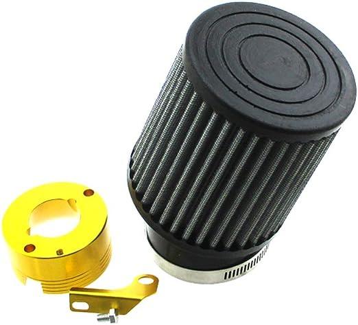 Amazon.com: XLYZE Kit de filtro de aire y adaptador para ...