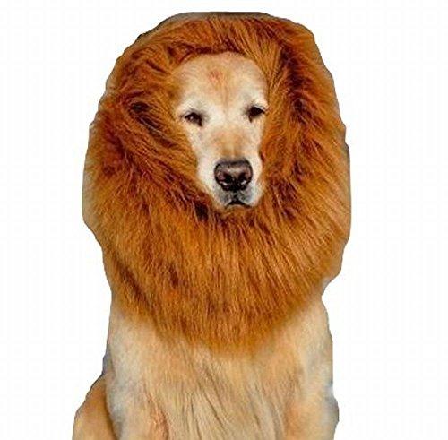 Large (Large Breed Dog Halloween Costumes)
