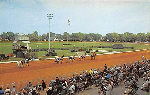 Lexington, KY, USA Kentucky Trotting Horse Breeders Ass'n Track Horse Racing Postcard unused (Best Ass In Track)