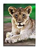Wanted Art Ready to Hang Canvas Home Décor Wall Art 34 x 46 Tiger Paw Cub Portrait Painting Africa