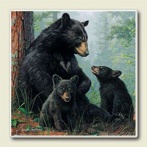 Coaster Set Absorbastone - Black Bear Family Wildlife Lodge Home Decor Absorbastone Coasters Set/4