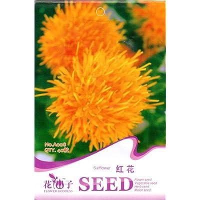 Each Pack 40 Seed Chinese Medicine Saffron Flower Seeds HOT! (3) : Garden & Outdoor