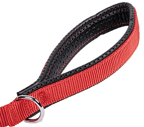 Image of GoGo Pet Products 3/4-Inch Wide Comfy Nylon Dog Leash, 6-Feet Long, Red