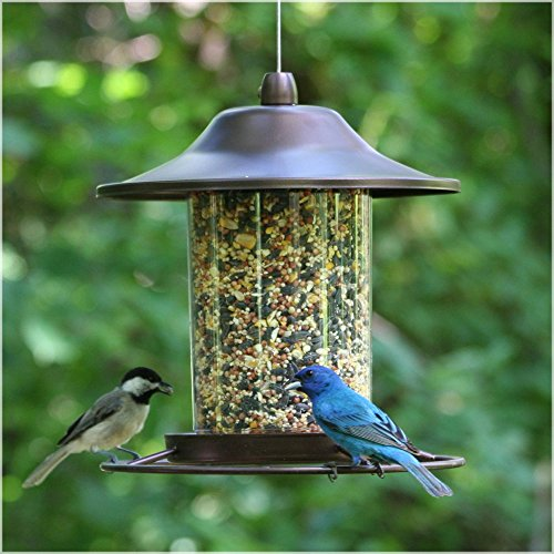 Perky-Pet Small Panorama Bird Feeder