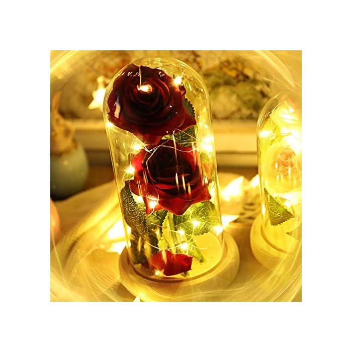 """51lu6TF4zCL ♥ """"KIT DE ROSA ROJA """"BEAUTY AND THE BEAST"""": Incluye 2 piezas de Red Silk Rose, 20 Leds Strip Light con A Glass Dome y A Wooden Base, crea un ambiente romántico para los amantes. ♥ROSA BRILLANTE EN BÓVEDA DE CRISTAL: Altura 18cm, Diámetro 8.5cm. Espesor de vidrio de 0.23cm. Con el paquete confiable. Por favor, tenga la seguridad de comprar. También puede cortar y doblar la longitud de la rosa según su necesidad. E insértelo en el pequeño orificio de la base de madera. ♥ROSA DE SEDA ARTIFICIAL: La cadena de 20 LED tiene una longitud de aproximadamente 2m / 6.6ft, está hecha con un fino alambre de cobre flexible que crea la forma que desee y agrega un hermoso acento decorativo. Hecho de alambre de cobre alto, flexible, IP20 a prueba de agua, duradero para uso diario."""
