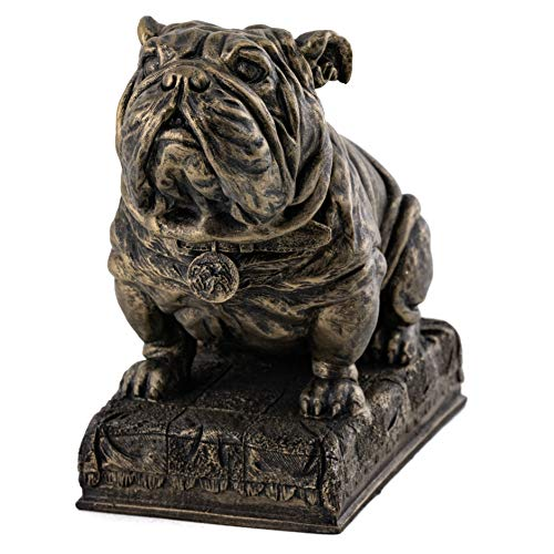 Top Collection Classic English Bulldog Statue - Hand Painted Cute Canine Decorative Sculpture in Premium Cold Cast Bronze - 5.5-Inch Collectible Animal House Pet Mascot -