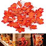 MiMoo Thanksgiving Harvest Fall Garlands String Lights, Maple Leaf String Lights, 20LED 6.56ft Battery Powered Harvest Fall Garlands String Light