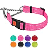 CollarDirect Reflective Martingale Collars for Dogs Training Chain Pet Choke Collar with Buckle Red Pink Mint Green Orange Blue Black Purple (M, Pink) Larger Image