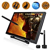Ugee UG1910 19 Inches Digital Pen Display Drawing Monitor with 2 Original Rechargeable Pens, 2 Charging Lines,1 Drawing Glove and 1 Screen Protector