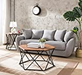 Vintage Brown/Metal Frame Hexagon Coffee Table by eHomeProducts
