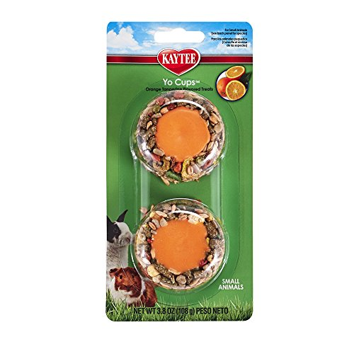 Kaytee Pet Products SKT100504120 Fiesta Yogurt Cup Small Animal Treat, 3.8-Ounce, Tangerine Orange Flavor