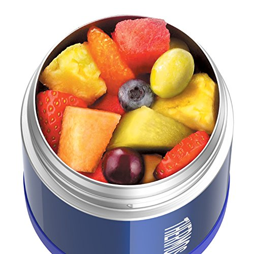 Green Kitchen Jeddah: Thermos Funtainer 10 Ounce Food Jar, Blue