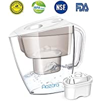 Aozora 10 Cup Water Filter Pitcher w/Chlorine Removal Filter