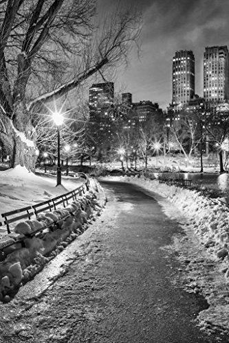 New York City Central Park Wintery Path B&W Photo Art Print