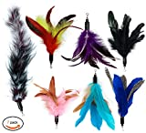 Best Toy With Feathers - EcoCity Cat Wand Feather Refills For Interactive Cat Review