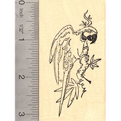 Parrot Rubber Stamp, Macaw, Bird: Arts, Crafts & Sewing
