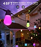 Govee Bluetooth 48ft RGBW Outdoor String