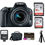 Canon EOS Rebel SL2 SLR Camera with 18-55mm Lens and Canon Bag and 48GB Bundle
