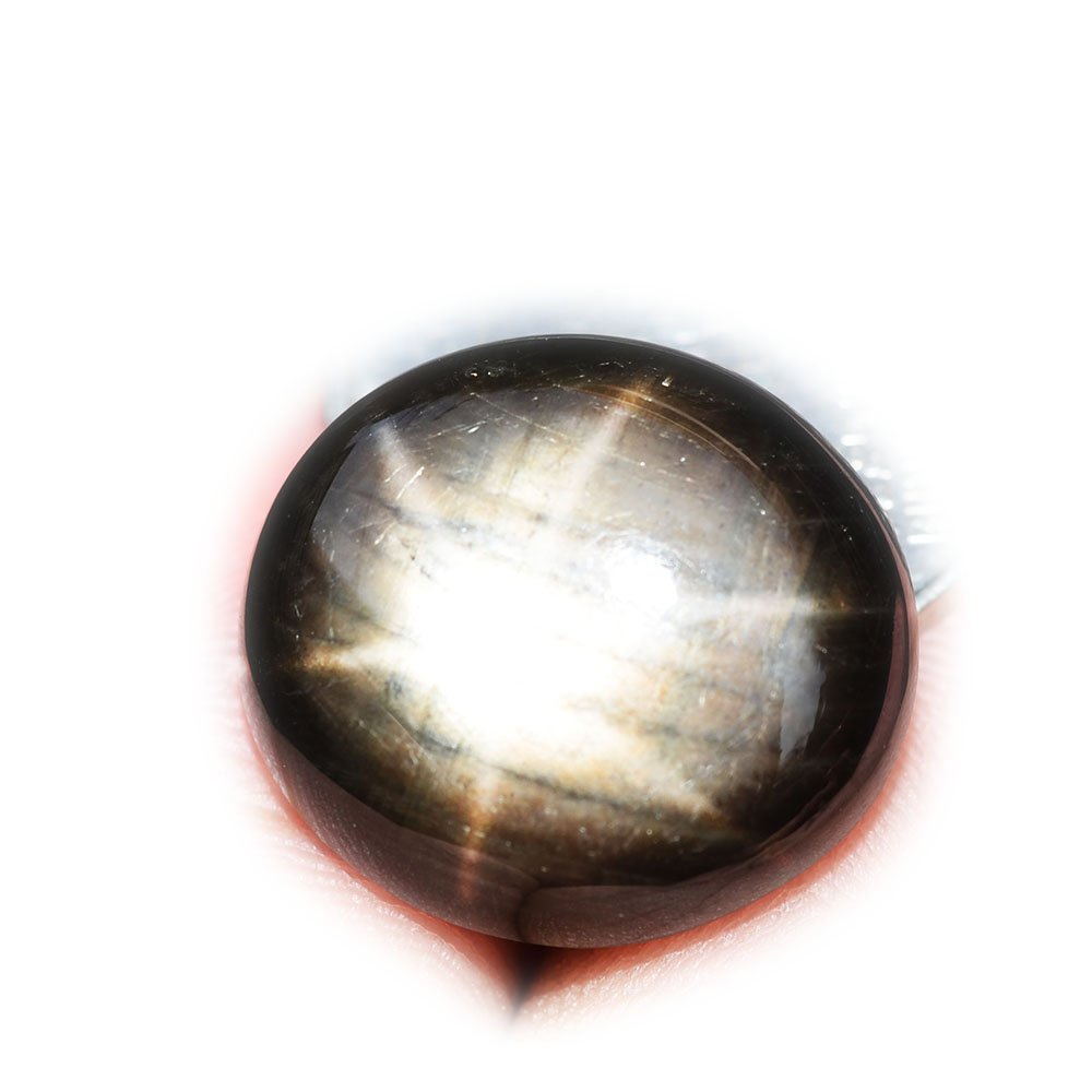 Certified BGL 25.55ct Natural Cabochon Black Stars Sapphire 6 Ray Thailand #B