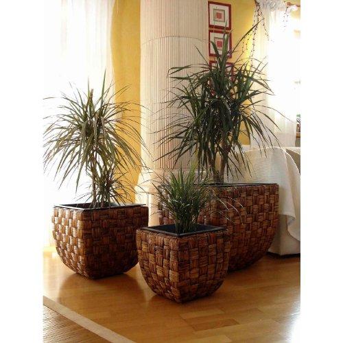 3er Set Wasserhyazinthe Blumenkübel Übertöpfe Pflanzkübel Blumentopf