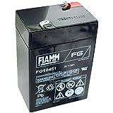 Fiamm FG10451 plomb-acide batterie de 6 volts, 4500mAh