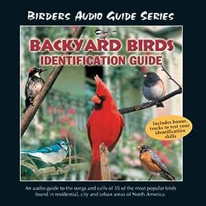 John Grout - Backyard Birds Identification Guide - Amazon ...