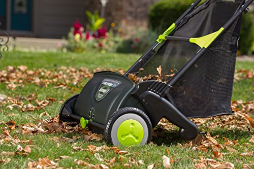 Buy mower for leaf pickup