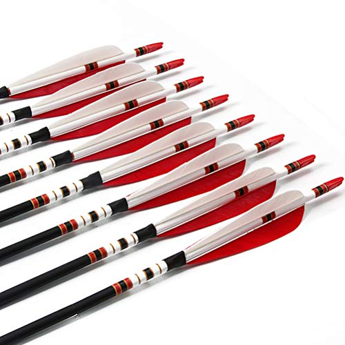 PG1ARCHERY 30 Inch Carbon Arrows with 5
