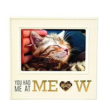 Red Barrel Studio Montagano You Had Me At Meow Picture Frame Wayfair