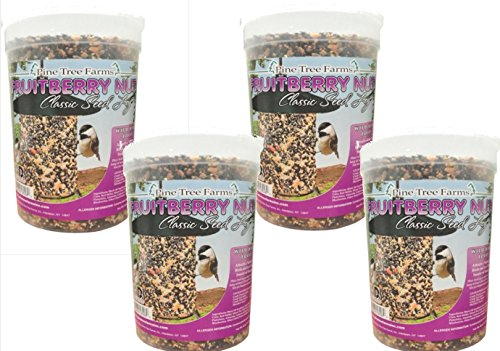 (Pine Tree Farms 4 Pack, 72 Ounce Fruit Berry Nut Classic Seed Log 8006 Made in USA )