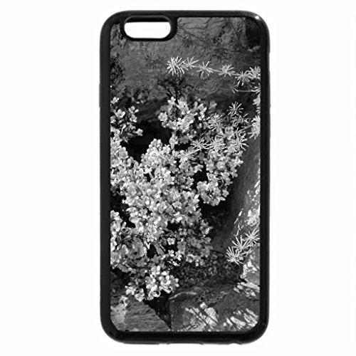 iPhone 6S Plus Case, iPhone 6 Plus Case (Black & White) - A fantastic day at Edmonton garden 42