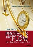 Projects that Flow. Mehr Projekte in kürzerer Zeit: Die Geheimnisse erfolgreicher Projektunternehmen (QuiStainable Business Solutions, Band 1)