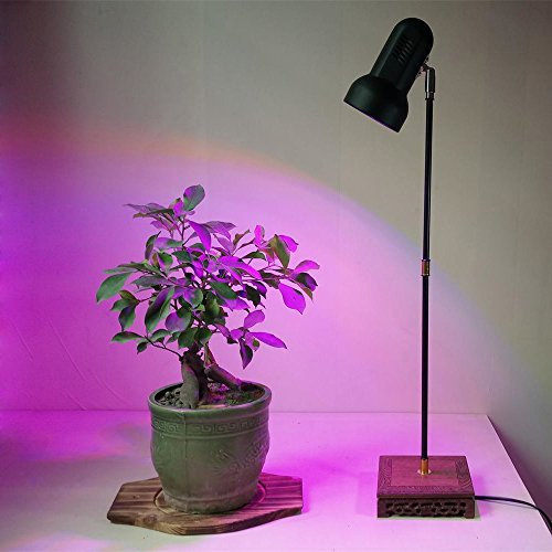 LED Plant Grow Light Stand Desk Lamp System with 40W Full Spectrum Growing Bulb for Home Graden Indoor Plants Veg Flower by AiHihome
