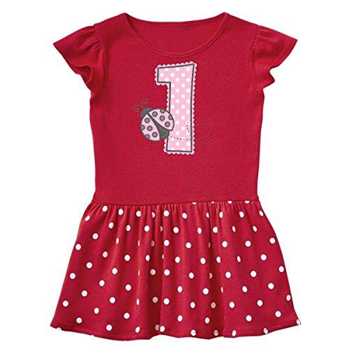 inktastic - Pink Ladybug 1st Infant Dress 6 Months Red and Polka Dot 1d278