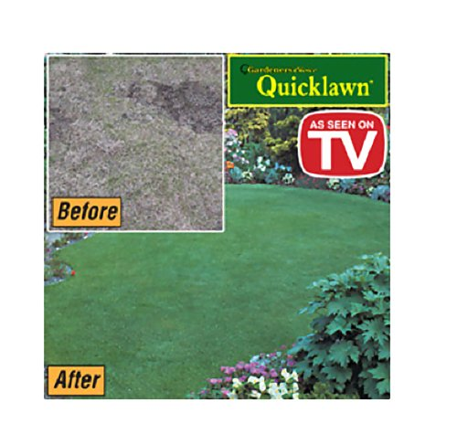 Quicklawn Grass Seed - 1