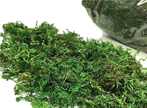 Yalulu 100g/bag Imitation Silk Flower Green Moss Plants Vase Turf Accessories for Wedding Flower Pot Decoration